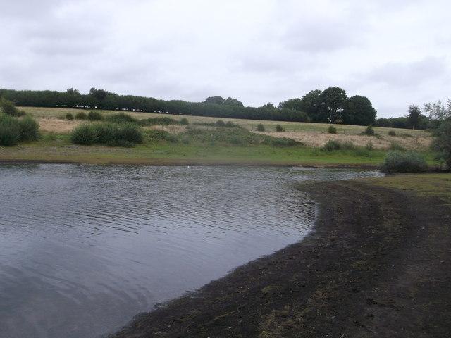Goose Corner, Bewl Water
