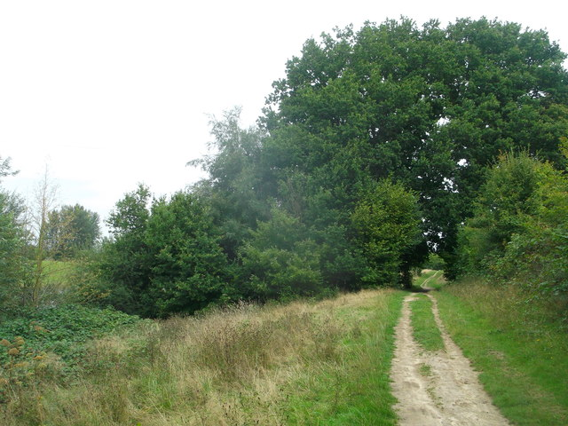 Round Reservoir route towards Hazelhurst Farm