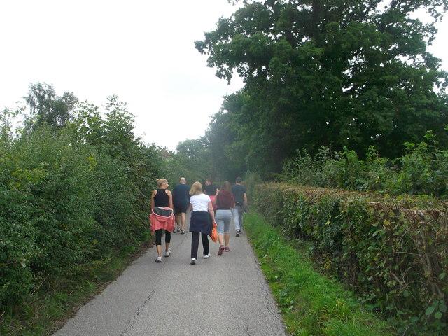 Walkers on Birchett's Green Lane