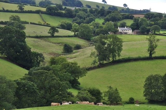 Mid Devon : Hillside Scenery
