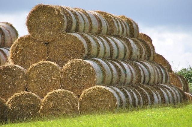 Mid Devon: Straw Bales