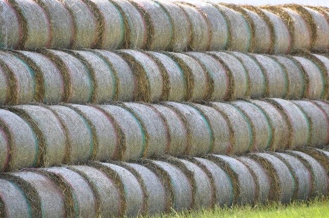 Mid Devon : Straw Bales