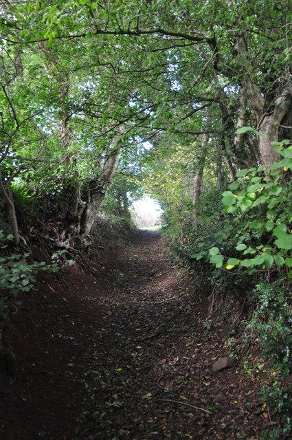 Mid Devon : Back Road