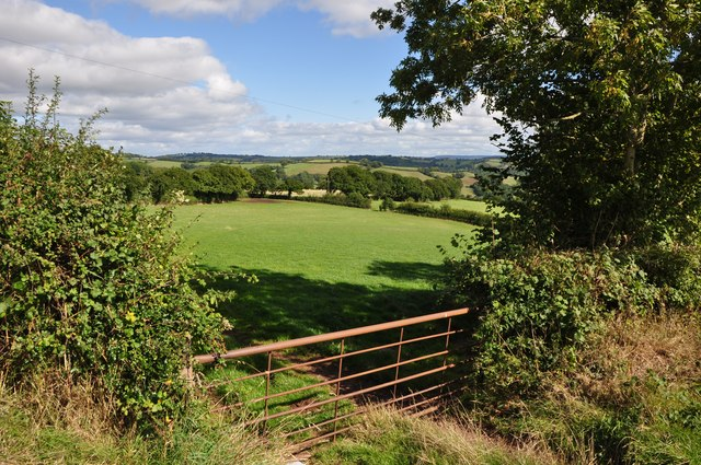 Mid Devon : Gate & Countryside
