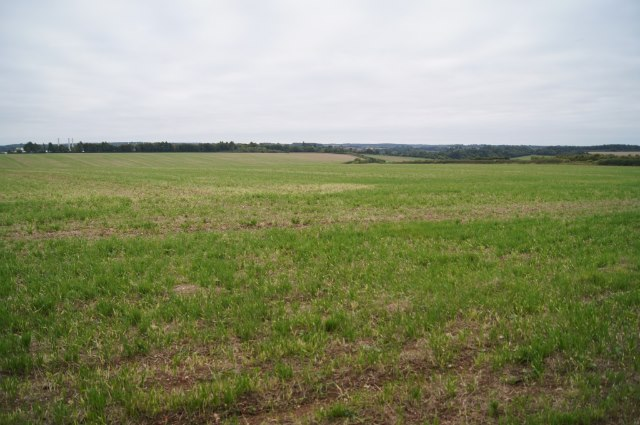 Farmland north of Overton