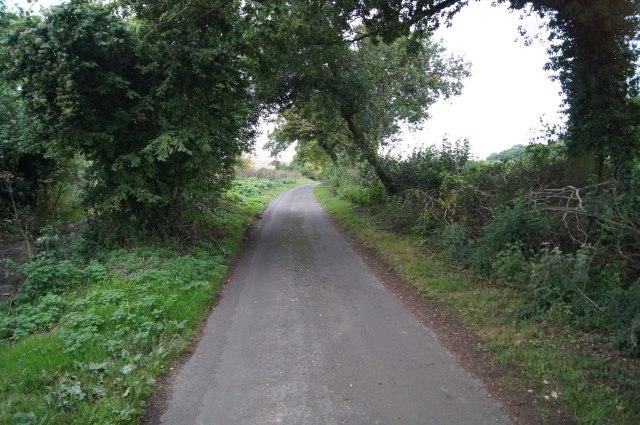 Lane towards Kingsclere