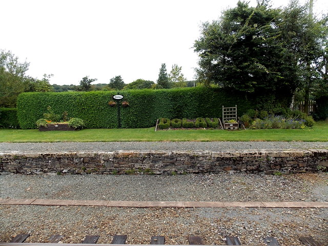 Topiary at Dolau railway station