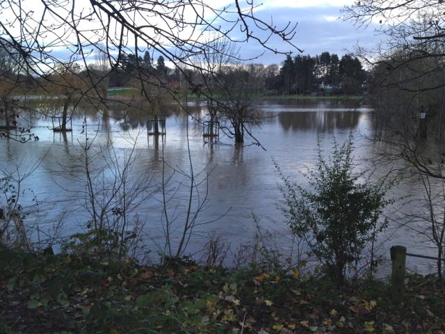 River Avon by Emscote Gardens, Warwick 2012, November 25, 15:10