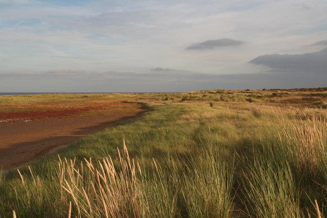Dune lagoon