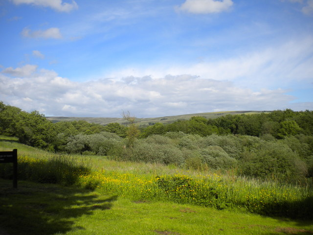 Churnet Valley east of Tittesworth Reservoir
