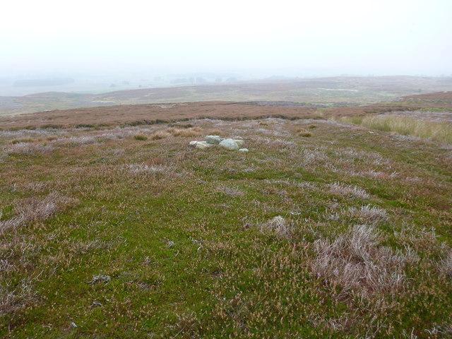 Strange stones on Barningham Moor
