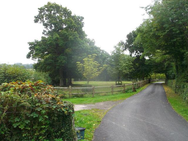 Farm road to Holbeam Wood