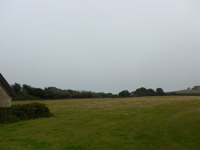 Field adjacent to St Agnes, Freshwater