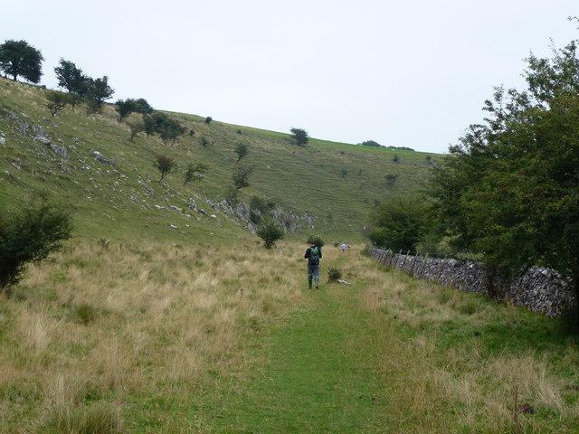 Walking in Hay Dale