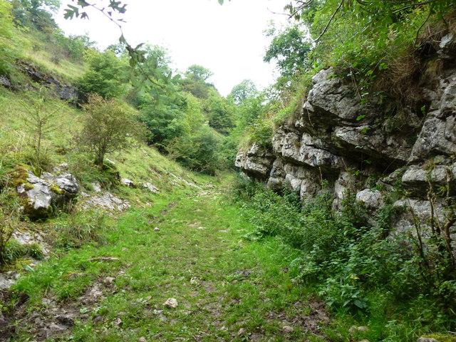 Limestone outcrops in Peter Dale