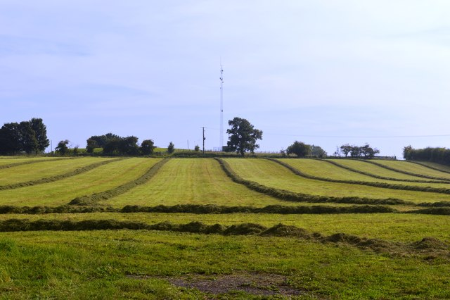 Farmland and mast on Butter Hill