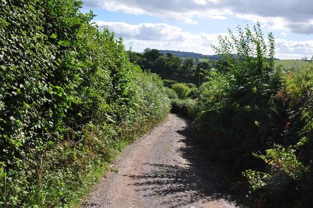 Mid Devon : Farm Track to Coombewillis