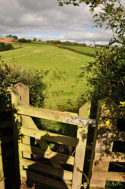 Mid Devon : Footpath Gate & Field