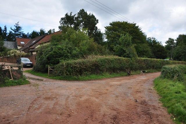 Mid Devon : Farm Track to Well Farm