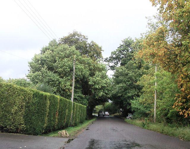Flexford Road at Ryders Farm