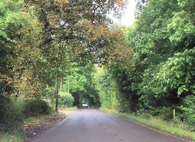 Flexford Road at Castlehill Farm