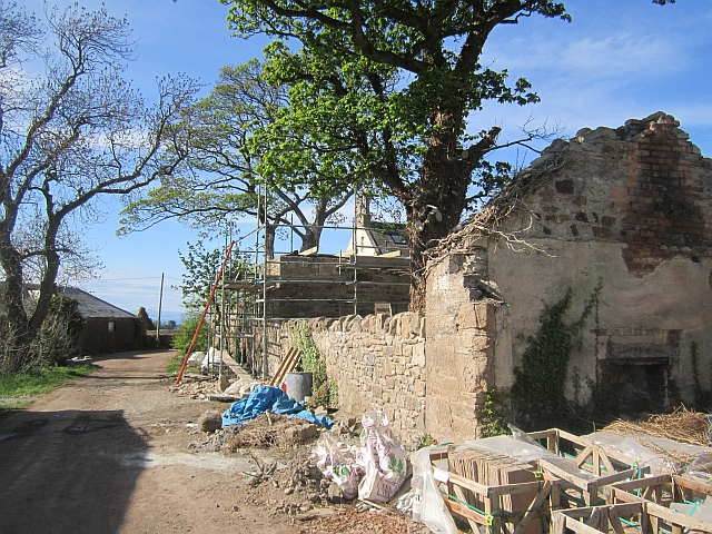 Renovation, West Bank