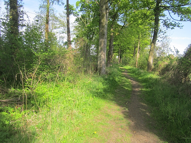Path beside the B6355