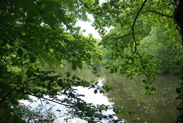 Lake, Broke's Wood