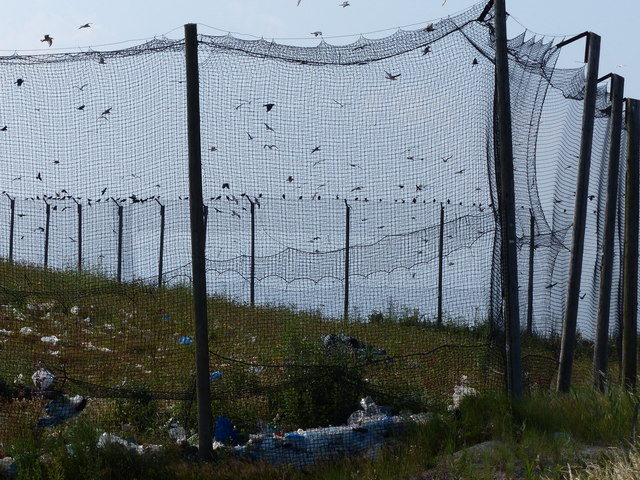 Netting at the waste disposal landfill site