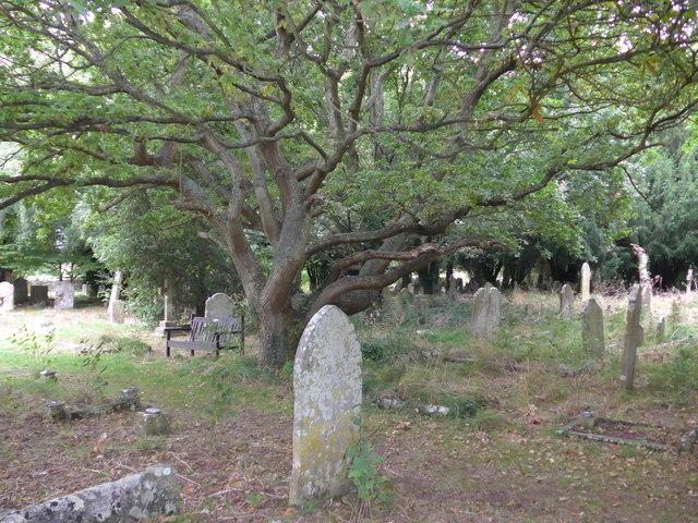 All Saints, Freshwater: churchyard (4)