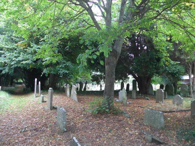 All Saints, Freshwater: churchyard (6)
