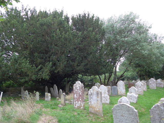 All Saints, Freshwater: churchyard (11)