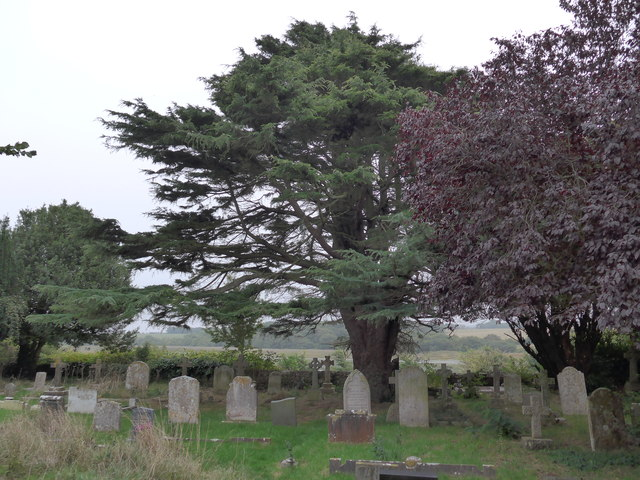 All Saints, Freshwater: churchyard (12)