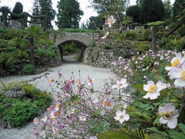 Brodsworth Hall fern garden