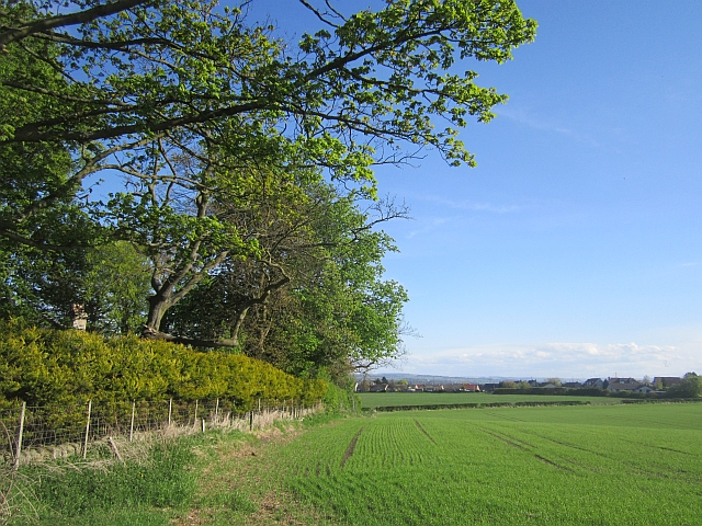 Arable land, North Elphinstone