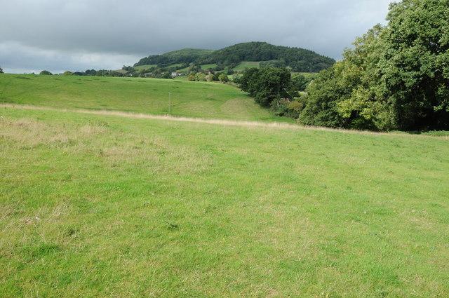 Farmland near Dixton