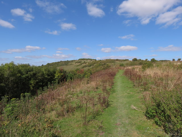 Mill Hill Nature Reserve, (upper, south)