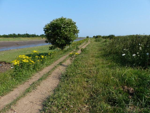Heading south along the Macmillan Way