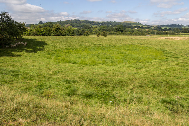 Field near The Mount, Hundred House, Powys