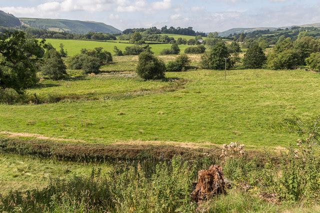 Field near The Mount, Hundred House, Powys