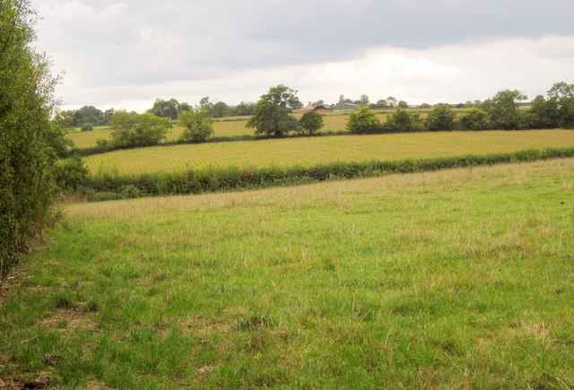 Fields, Templecombe