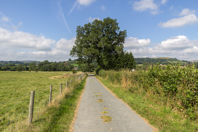 Road from Hundred to The Mount, Hundred House, Powys