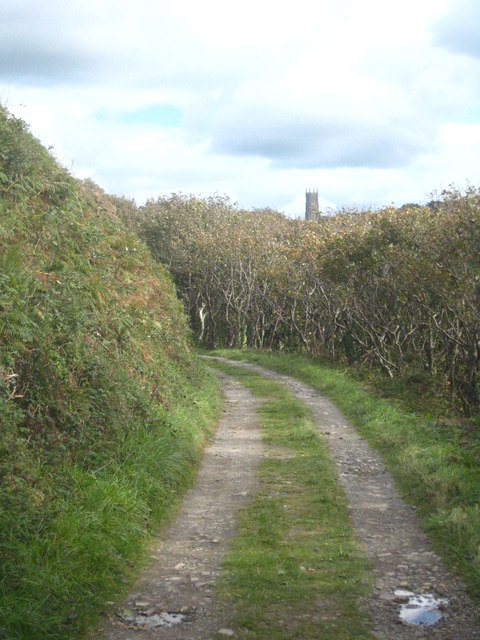 The private track leading from the beach to Hartland Abbey