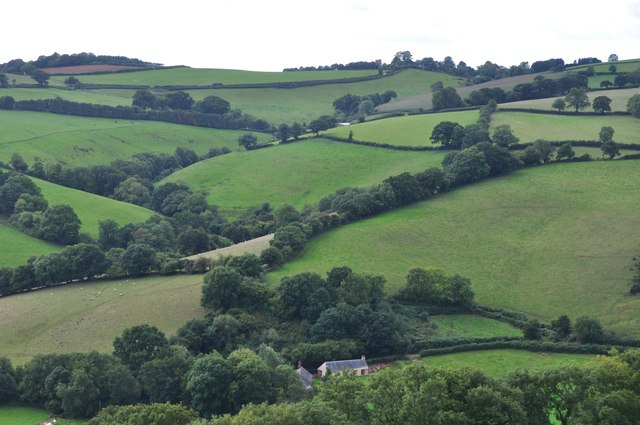 Mid Devon : Grassy Hillsides