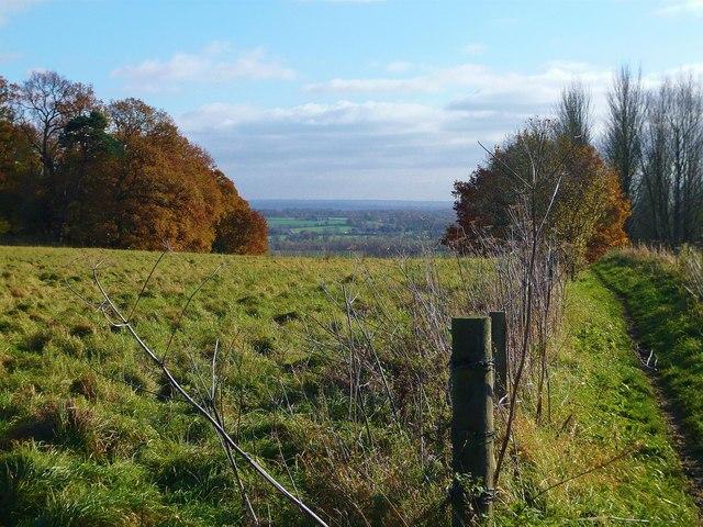 Above the flood plain, Binfield Heath, Playhatch