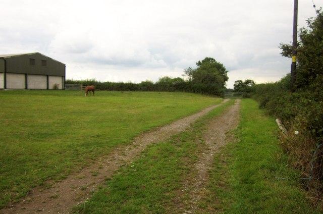 Track near Newleaze Farm