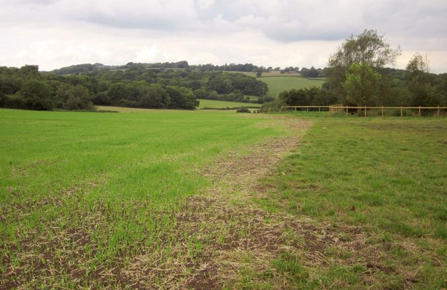 Path towards Stowell
