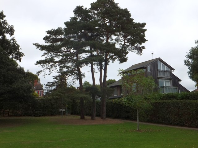 The edge of County Hall grounds, Exeter