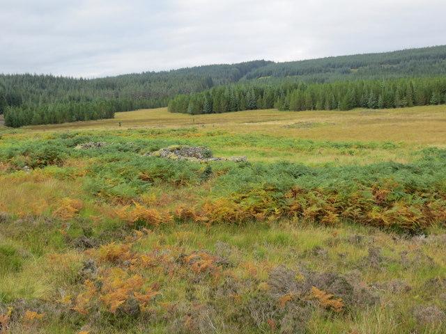 Shielings in Rannoch Forest