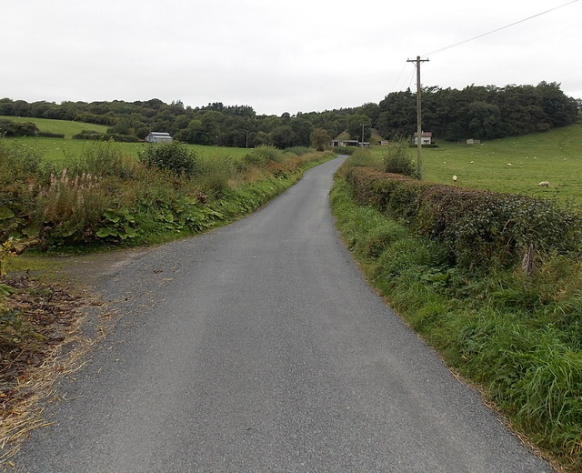 Road from Dolau to Llanddewi Ystradenni